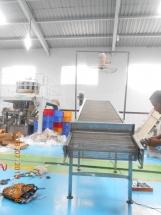 Chain Conveyor Assembly